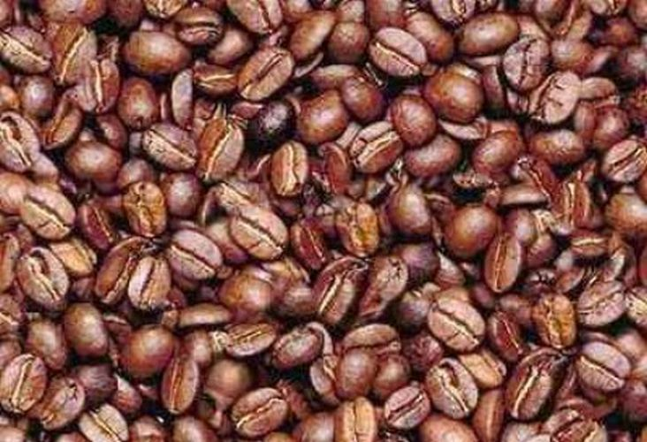 illusion-coffee bean